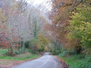 Route de guengat